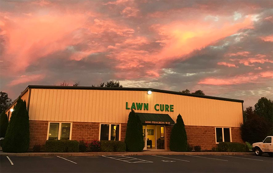 Lawncure Office